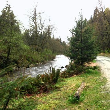 Brunette River4