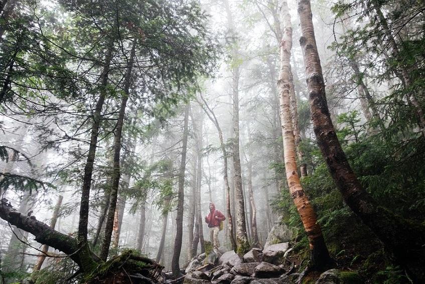 landscape-nature-man-person